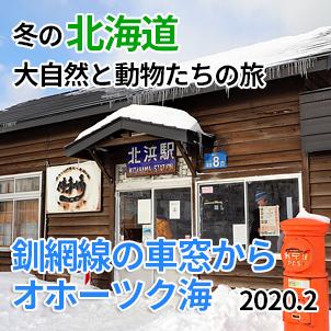 サムネイル釧網線北浜駅