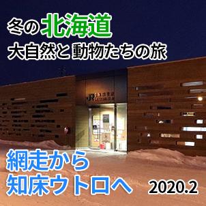 サムネイル20200208知床斜里