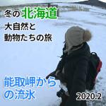 2/8 たった1日で網走を知るバスツアー「能取岬から眺める流氷」編