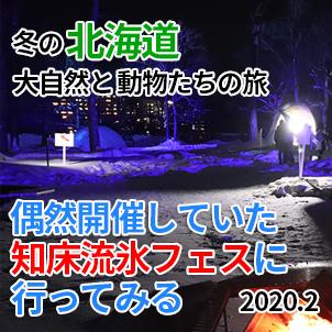 サムネ20200209-02