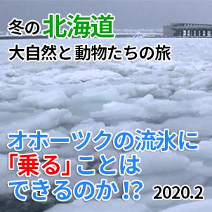 サムネ20200209