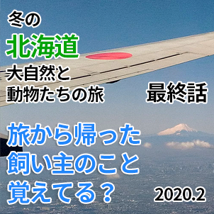 サムネ20200210-復元