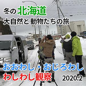 サムネ20200210-1