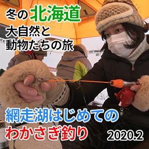 サムネ20200210-2