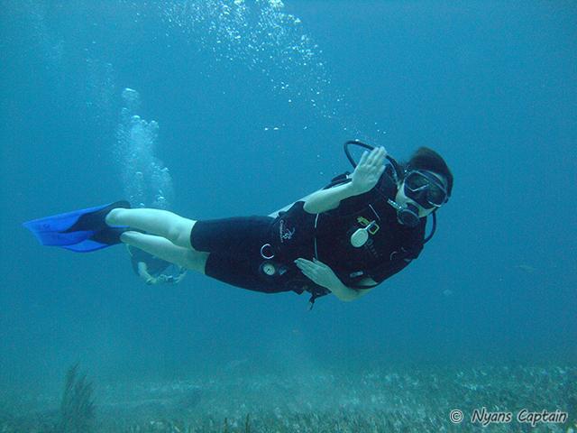 潜水暦長い