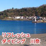 3/20 伊豆のダイビング 川奈リフレッシュ